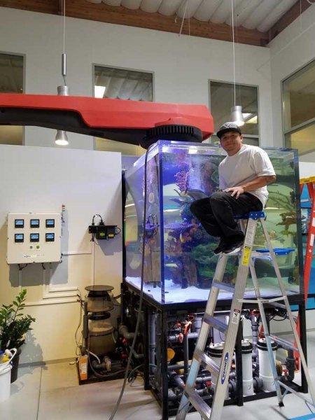 Cleaning large aquarium tank