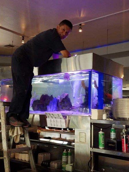 Large aquarium service